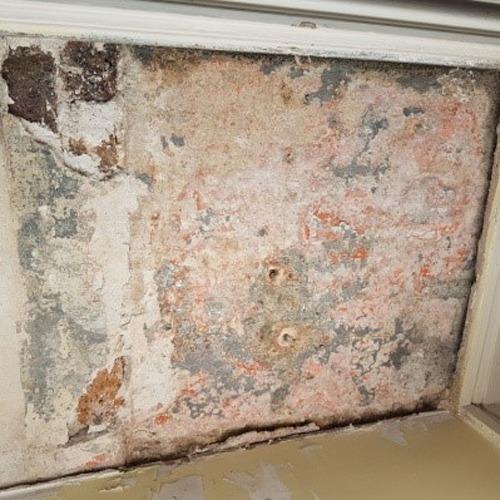 Moisture mold